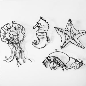 Sea Creatures by Charlotte Harvey